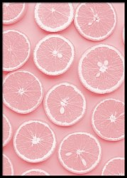 Pink Orange Slices